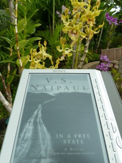 0349 | In a Free State | V. S. Naipaul