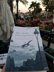 0602 | Hallucinating Foucault | Patricia Duncker post image