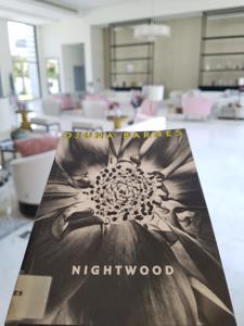 0641 | Nightwood | Djuna Barnes post image