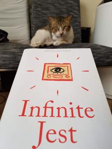 645 | Infinite Jest | David Foster Wallace post image